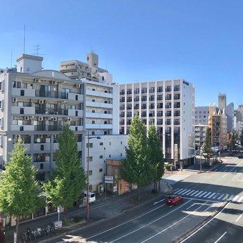 バルコニーはないので窓からの景色。通りの緑が綺麗です。(※写真は5階の別部屋からのものです)