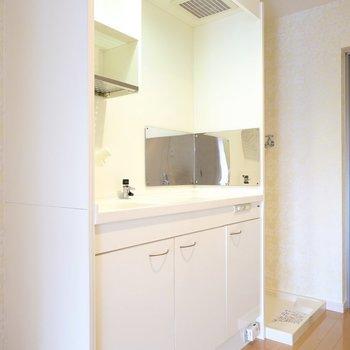 出て左側にコンパクトなキッチン。便利な水切りラックが付いています。(※写真は2階の同間取り別部屋のものです)