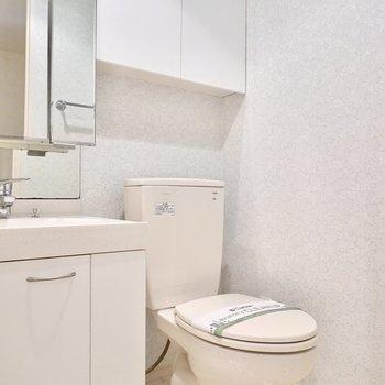 洗面台のすぐとなりにはトイレ。壁には収納棚もあります。(※写真は2階の同間取り別部屋のものです)