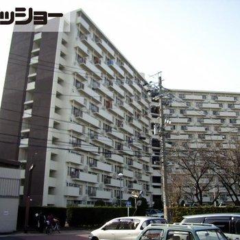 中富住宅F棟1308号室