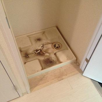 洗濯パン。扉を閉めて隠して置けますよ◯(※写真は9階の反転間取り別部屋、清掃前のものです)
