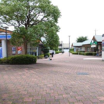 駅前はドラッグストアや飲食店がありました。