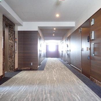 共用部】ホテルっぽい雰囲気の廊下です。