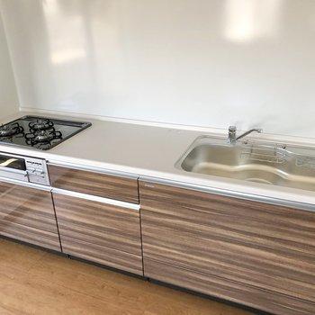 【DK】シンクや調理スペースも広めです。