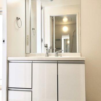 洗面台は収納もしっかり。(※写真は4階の同間取り別部屋のものです)