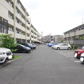 玄関前の共用部側は駐車場。駐輪場もこちらに。