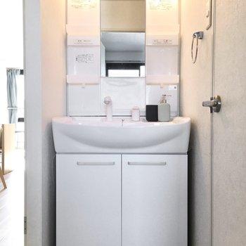洗面台はゆったりシャンプードレッサー。(※写真は2階の同間取り別部屋、モデルルームのものです)
