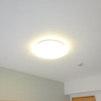 照明もお部屋に合わせて暖色の物が設置済み。分かってらっしゃる。