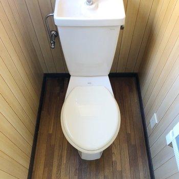 トイレはスタンダードなものです。