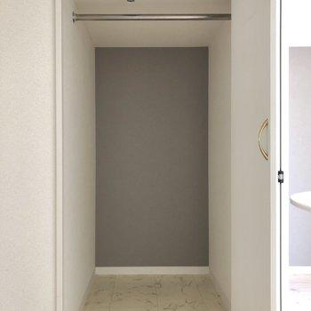 クローゼットは奥行きがあります。ボックスを使うとスペースを上手に活用できそうです。(※写真は3階の号間取り別部屋のものです)