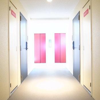 【共用部】お部屋は、エレベーターを出てすぐ!左のほうです。