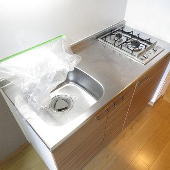 キッチンは充実の2口コンロのシステムキッチン(※写真は4階の反転間取り別部屋のものです)