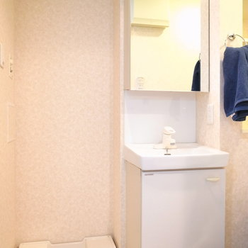 浴室を出て左手に洗面台と洗濯機置き場があります。