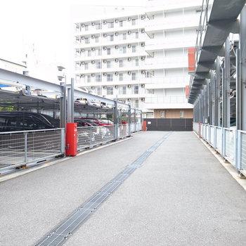 【共用部】駐輪場のとなりに駐車場です。