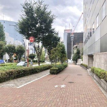 駅からお部屋までの道のりは、ゆったりとした道幅。