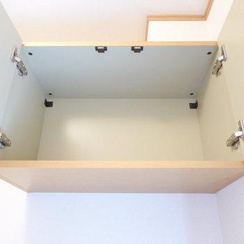 上段は棚の無いフリータイプ。