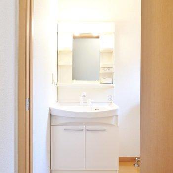 ドアを開けると正面に棚付きの洗面台。