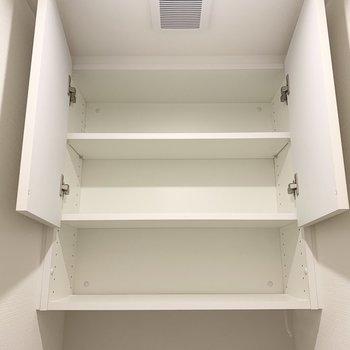 上部の収納。トイレットペーパーや掃除道具を入れられますね。