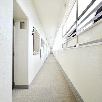 玄関前の共用部も改修で綺麗に。