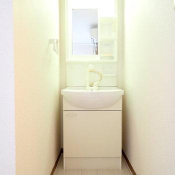 洗面台はすっぽり。