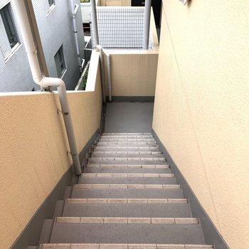 階段部です。綺麗に整備されていますよ。