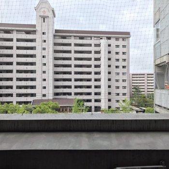 【4階部分】鳥よけネットがあるのが嬉しいですね。