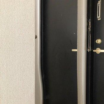 扉は鏡になっています!身だしなみチェックも楽チン。