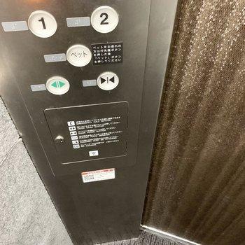 エレベーターにはペットボタンの機能付。