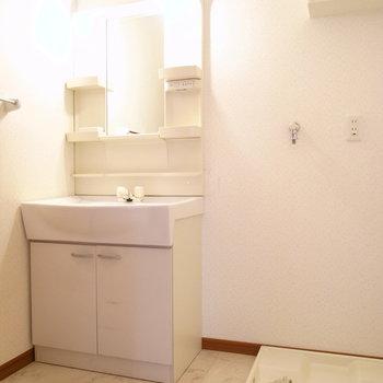 洗面台と洗濯機置き場は隣同士。