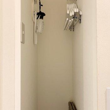 こちらのお部屋には小さな収納スペースが付いていました!