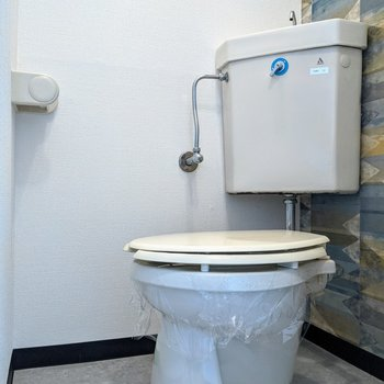 落ち着くサイズ感のトイレ。こちらにもエスニック柄クロスが貼られています。