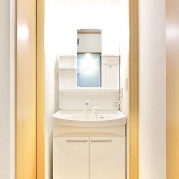 右側に棚付きの洗面台。便利なシャンプードレッサー仕様です。
