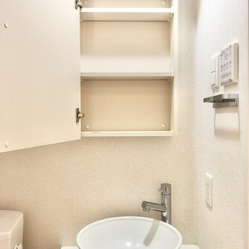 洗面台鏡裏は収納。洗面ボウルがかわいいですね。