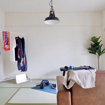爽やか雰囲気がありますね。ナチュラルな色合いの家具がよく似合いそうです。