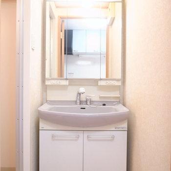 浴室を出て左手に洗面台があります。