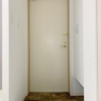 玄関もゆったりめ。少し変わった大理石調の床が綺麗でした。(※写真は2階の反転間取り別部屋のものです)