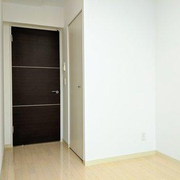 [4.8帖洋室]入り口のすぐとなりにクローゼット扉があります。