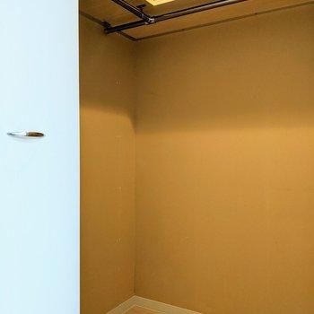 [4.8帖洋室]ウォークインクローゼット。広くてハンガー掛けと明かりもついています!