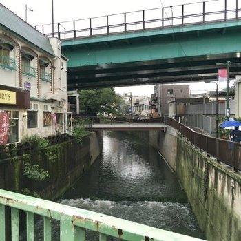 妙正寺川が駅のそばを流れます。向こうに見えるのは桜の木。春の訪れが待ち遠しいです。