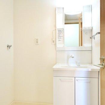 入って右手には洗濯機置場と、新しいシャンプードレッサー仕様の洗面台。
