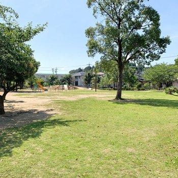 歩いて1分ほどの場所に公園がありましたよ。