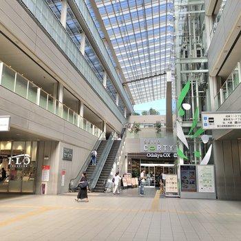 お買い物は駅中で済ませられそうです。