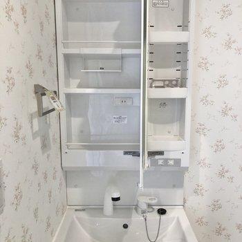 シャワータイプで収納も多めです。