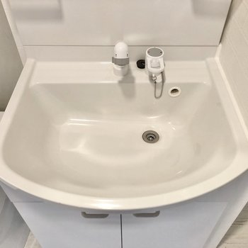 大きな洗面ボウルで朝の準備も捗りそう。