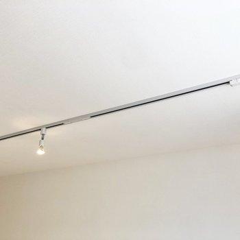 天井にはライトレールが走っています。