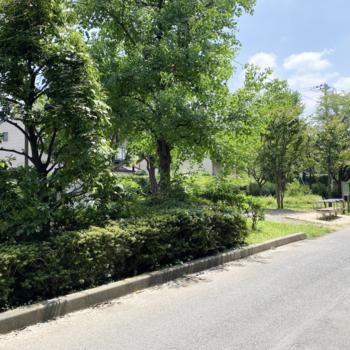お部屋までの道に戸田公園東口緑地があります