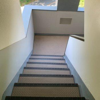 階段を上って4階まで。日頃の良い運動になりそうだ!