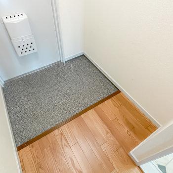 玄関には靴箱はありませんが、設置するスペースはじゅうぶんあります。