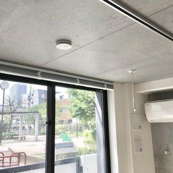 天井には竿掛けとライティングレール。