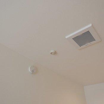 天井にはしっかり換気扇が。